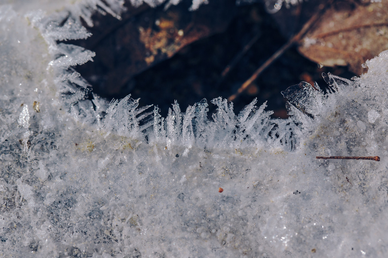 Such beautiful formations of ice and frost...